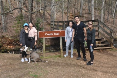 Amicalola Hike - 1 of 34