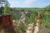 Providence Canyon Park - 46 of 128