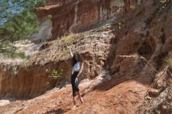 Providence Canyon Park - 70 of 128